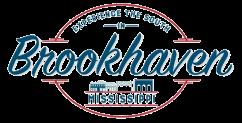 brookhaven tourism transparent